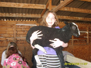 Alice the lamb with Millie